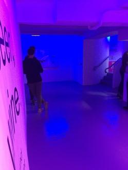 Fort Delta Gallery